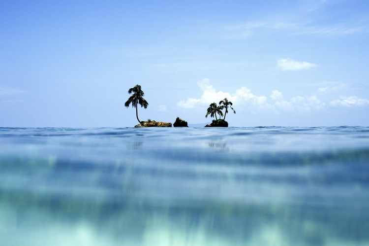 Morgan Maassen