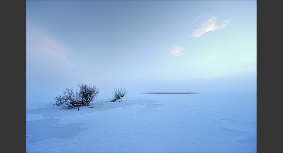 Zimowy dzień fotografa przyrody Szeroki Kadr