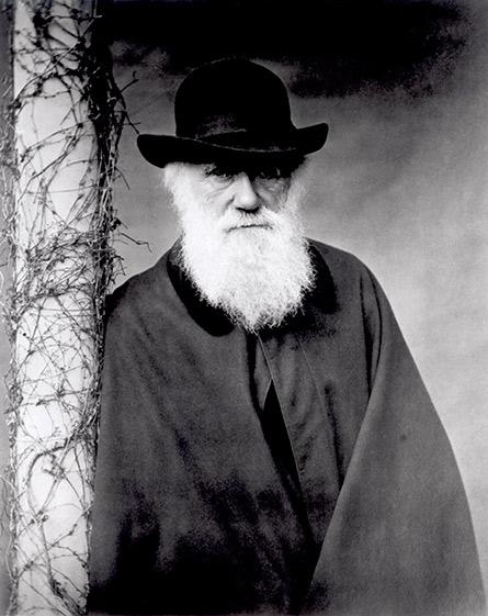 Portret Karola Darwina, 1881 r., fot. Julia Margaret Cameron, © Bridgeman Art Library/FotoChannels